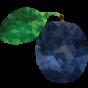 Šljiva-poly
